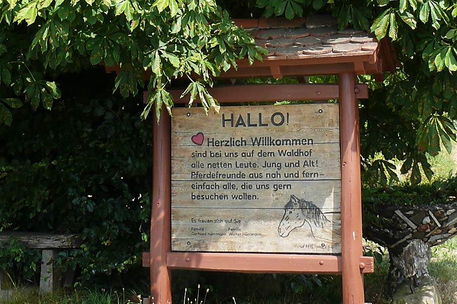 Hallo und herzlich Willkommen auf der Reitanlage Waldhof Wildberg